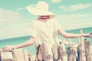 Summer_Fence