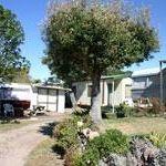 camp-site-pauanui-glade-holiday-park1