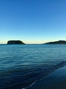 Whangamatā is famous for its unique combination of beach and unspoiled rainforest.